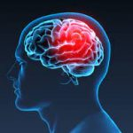 Mind, Matter, Consciousness and the Brain – Part One